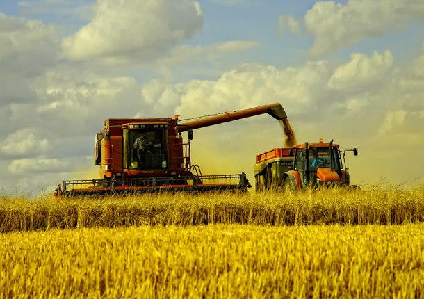 Якутск осваивает заброшенные сельхозугодия
