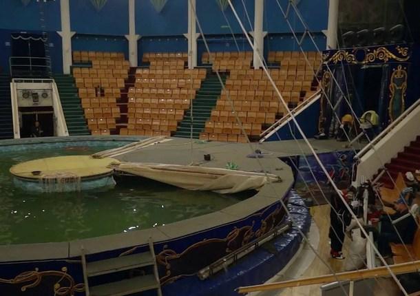 В Якутск приехал цирк